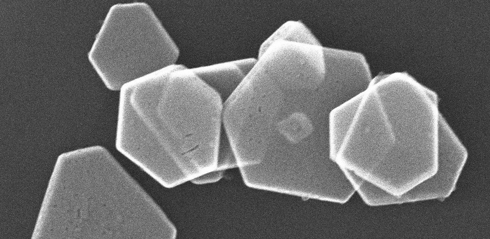 This is an electron microscopy image of hexagonal silver nanoplates formed by the biomineralization peptides fused with p53Tet. @ Photo by Kazuyasu Sakaguchi