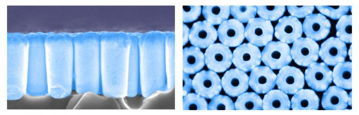 These are SEM images of a nanotube array: side view (left) and top view (right). @ UC San Diego Jacobs School of Engineering