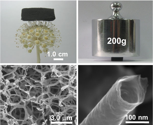 An illustration shows the features of graphene tubes under camera and microscopic view. [Photo/cas.cn]