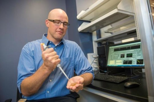 Adam Hall, assistant professor of biomedical engineering at Wake Forest School of Medicine, injects microliters of fluid into a flow cell holding a nanopore device that has demonstrated the ability to detect molecular biomarkers of disease. @ Wake Forest Baptist Medical Center Photography