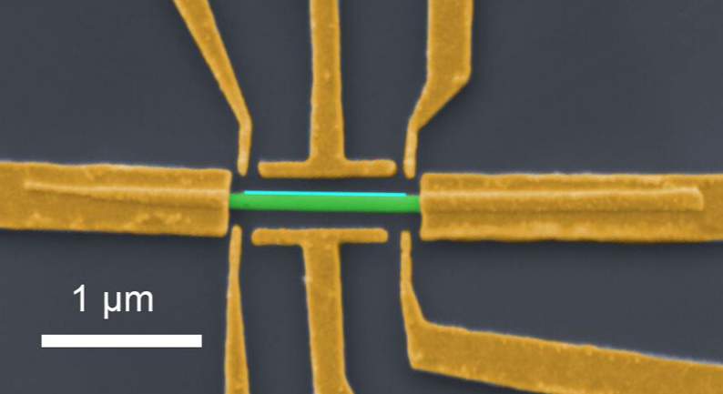 A nanowire device similar to those used in the study. The semiconducting nanowire (green), one-thousandth the width of a human hair, is coated with a superconductor (light blue) and electrically contacted with gold leads and electrostatic gates (yellow). (Credit: Shivendra Upadhyay / Sven Albrecht)