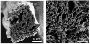 This is scanning electron microscopy imagery of a graphene fiber made from microwave reduced graphene oxide. @ Jieun Yang, Damien Voiry and Jacob Kupferberg