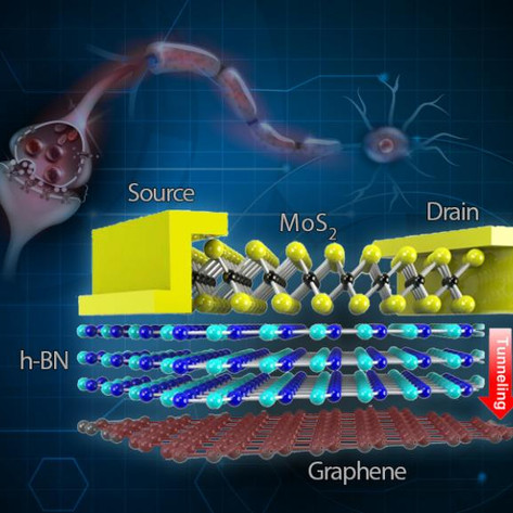 Memory for future wearable electronics