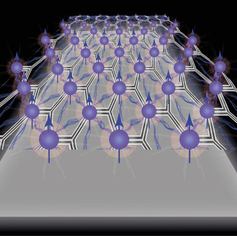 Spontaneous spin polarization demonstrated in a two-dimensional material