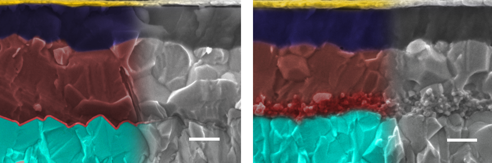 SEM-images of the different perovskite solar cell architectures, left with planar interface, right with mesoporous interface. Images are coloured: metal oxide (light blue), interface (red), perovskite (brown), hole conducting layer (dark blue), topped with contact (gold).  Scale bar is 200 nm. Image: A. Gagliardi/TUM