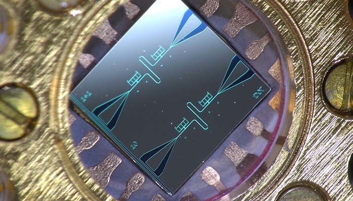 Photo of the centimeter-sized silicon chip, which has two parallel superconducting oscillators and the quantum-circuit refrigerators connected to them. Photo: Kuan Yen Tan