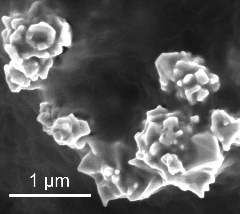 Bunched together, as shown here, nanoparticles of graphene-coated nickel conduct electricity. When the battery overheats, the particles separate and electric current stops flowing. During cooling, the particles reunite and the battery starts producing electricity again. Credit: Zheng Chen