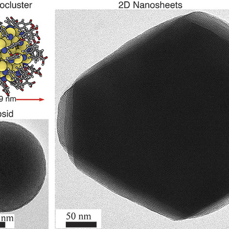 Self-assembling 2D and 3D materials formed by tiny gold nanoclusters