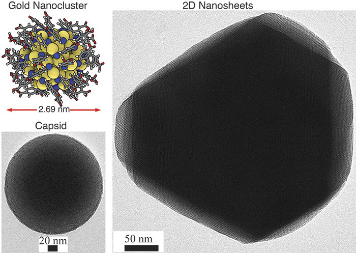 2D hexagonal sheet-like and 3D capsid structures based on atomically precise gold nanoclusters as guided by hydrogen bonding between the ligands. The inset in the top left corner shows the atomic structure of one gold nanocluster.