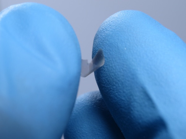 The researchers' plates are strong enough to be picked up by hand and retain their shape after being bent and squeezed.