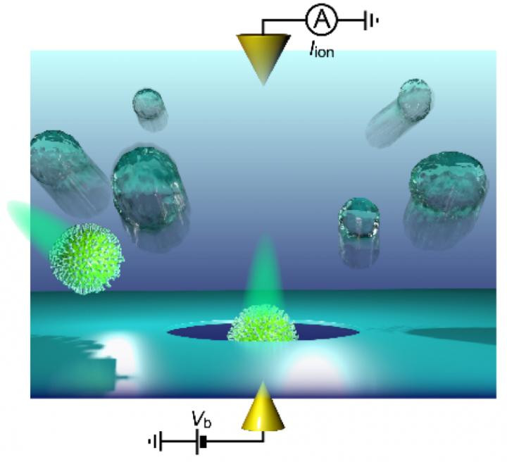 Detection of a single influenza virion using a solid-state nanopore.  @ Osaka University