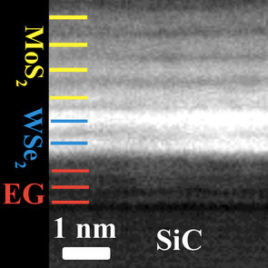 TEM image with labels.jpg