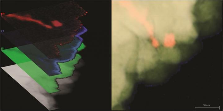 This is a scanning transmission electron microscope image of a nickel-platinum composite material created at The Ohio State University. At left, the image is overlaid with false-color maps of elements in the material, including platinum (red), nickel (green) and oxygen (blue). @ Imaging by Isabel Boona, OSU Center for Electron Microscopy and Analysis; Left image prepared by Renee Ripley. Courtesy of The Ohio State University.