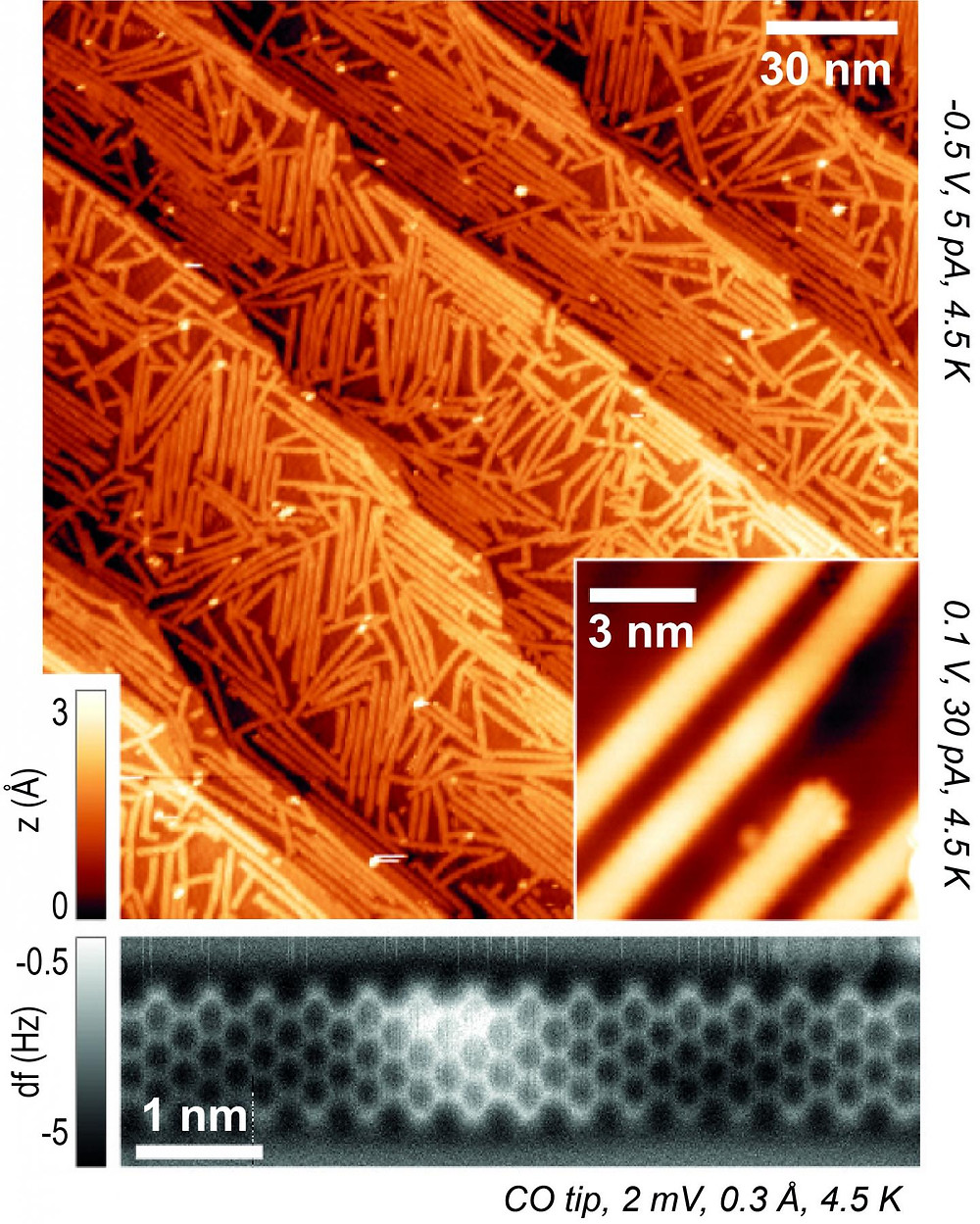 The microscopic ribbons lie criss-crossed on the gold substrate. @  EMPA