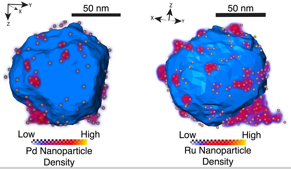 """Researchers at Rice University and the University of Cambridge made and characterized aluminum nanostructures decorated with """"islands"""" of various transition metals (above, palladium and ruthenium). The versatile plasmonic allows for customizable surface chemistry and reactivity in one-material nanostructures. (Credit: Rowan Leary/University of Cambridge)"""