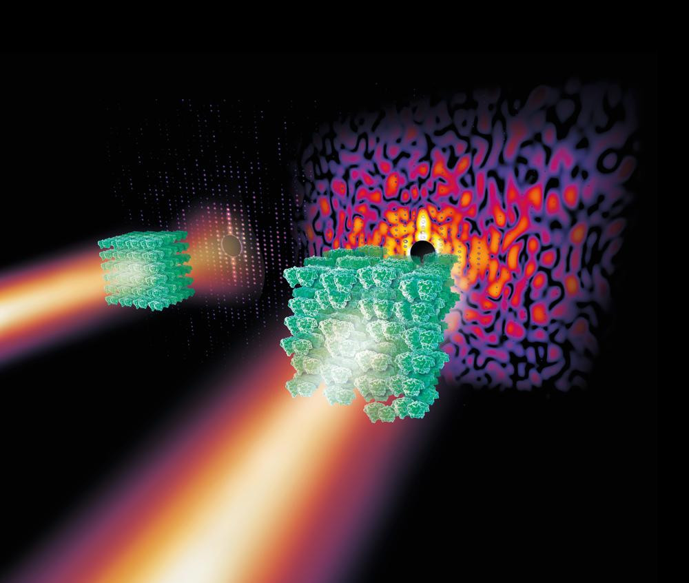 "Slightly disordered crystals of complex biomolecules like that of the photosystem II molecule shown here produce a complex continous diffraction pattern (right, the disorder is greatly exaggerated) under X-ray light that contains far more information than the so-called Bragg peaks of a strongly ordered crystal alone (left). Credit: DESY, Eberhard Reimann To determine the spatial structure of a biomolecule, scientists mainly rely on a technique called crystallography. The new work offers a direct route to ""read"" the atomic structure of complex biomolecules by crystallography without the usual need for prior knowledge and chemical insight. ""This discovery has the potential to become a true revolution for the crystallography of complex matter,"" says the chairman of DESY's board of directors, Professor Helmut Dosch."