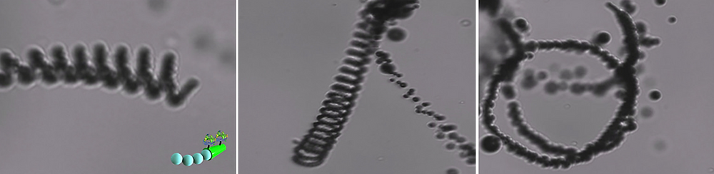 Video frames showing the movement of a micromotor in sea water. Image credit: Laboratory for Nanobioelectronics, UC San Diego Jacobs School of Engineering