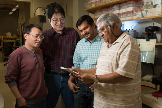 From left: Salk researchers Yifeng Xia, Eugene Ke, Narayana Yeddula and Inder Verma Click here for a high-resolution image. Image: Courtesy of the Salk Institute for Biological Studies