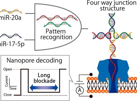 Nanopore technology with DNA computing easily detects microRNA patterns of lung cancer