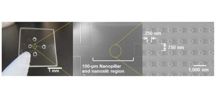Quartz-made Nanopillars of 250-nm diameter were arrayed inside nanoslit region of 100-nm high and applied for ultrafast microRNA extraction from nucleic acids mixture. @ Noritada Kaji