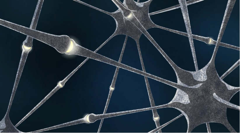 Fig.1. Neuron connections in biological neural networks  Source: MIPT press office
