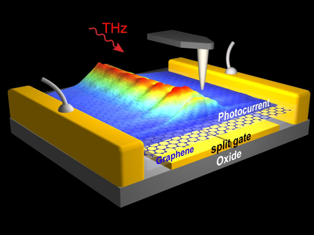 THz plasmons of extremely short wavelength propagate along the graphene sheet of a THz detector, as visualized with photocurrent images obtained by scanning probe microscopy. @ CIC nanoGUNE