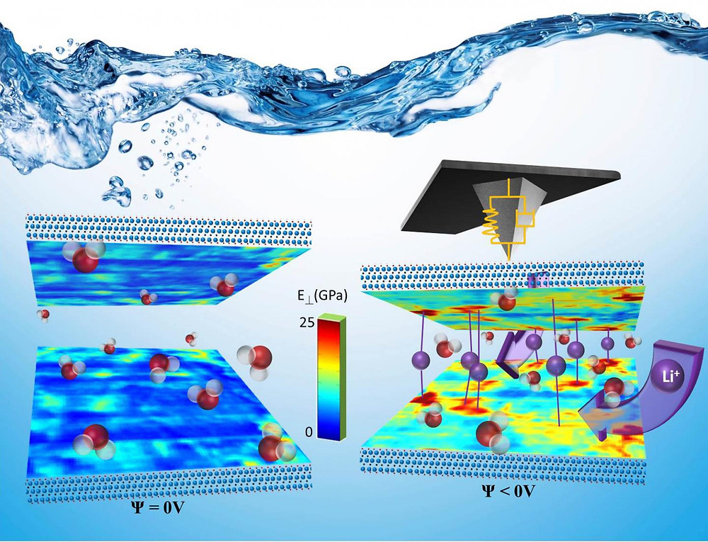 When a negative bias is applied to a two-dimensional MXene electrode, Li+ ions from the electrolyte migrate in the material via specific channels to the reaction sites, where the electron transfer occurs. Scanning probe microscopy at Oak Ridge National Laboratory has provided the first nanoscale, liquid environment analysis of this energy storage material.