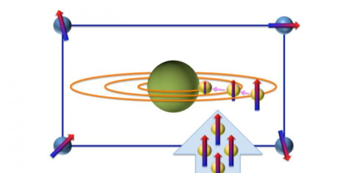 When a negative muon (μ-) is implanted into MgH2, the μ- is trapped by the muon atomic orbitals near a Mg nucleus. Since μ- has a polarized spin, we can obtain information about the magnetic field at the Mg nucleus sites, formed by the hydrogen nucleuses, through the observation of how the μ- spin depolarizes with time.  @ J. Sugiyama/Toyota Central Research & Development Laboratories Inc.