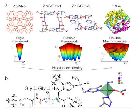 Scientists design new responsive porous material inspired by proteins