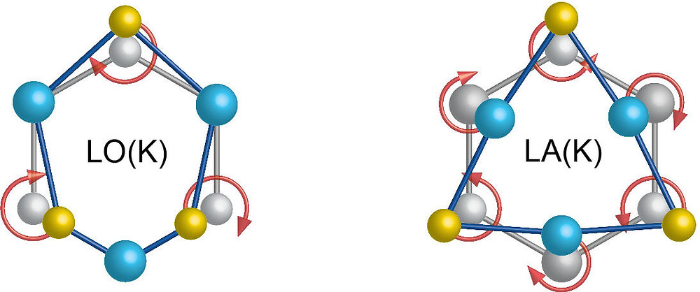 "This diagram maps out atomic motion in separate phonon modes. At left (""LO"" represents a longitudinal optical mode), selenium atoms exhibit a clockwise rotation while tungsten atoms stand still. At right (""LA"" represents a longitudinal acoustic mode), tungsten atoms exhibit a clockwise rotation while selenium atoms rotate in a counterclockwise direction. (Credit: Hanyu Zhu, et al.)"