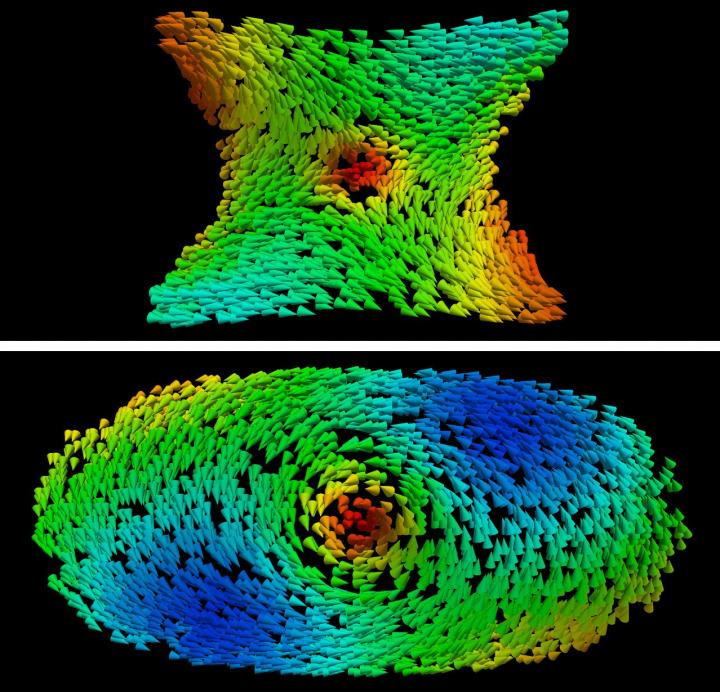 The top image shows the antivortex formed in the region with negative curvature of the torus. The swirling texture of a vortex can be observed in the lower image, which formed along the region with positive curvature. Arrows represent the direction of the magnetization. @ Carvalho-Santos