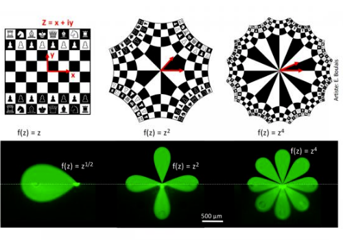 Illustration of the mathematical transforms used, first on the image of a chessboard, then on microfluidic multipoles.  @ Polytechnique Montréal and McGill University