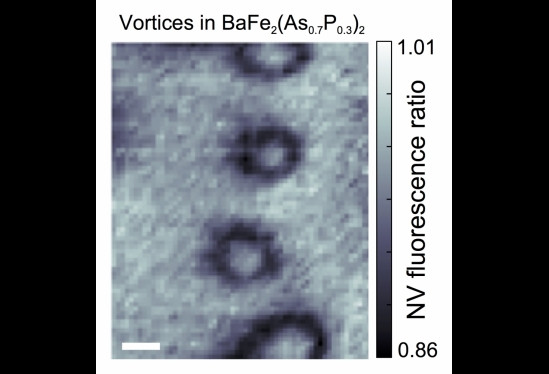 A nitrogen-vacancy magnetometry image of vortices formed by cooling the sample through its superconducting transition.