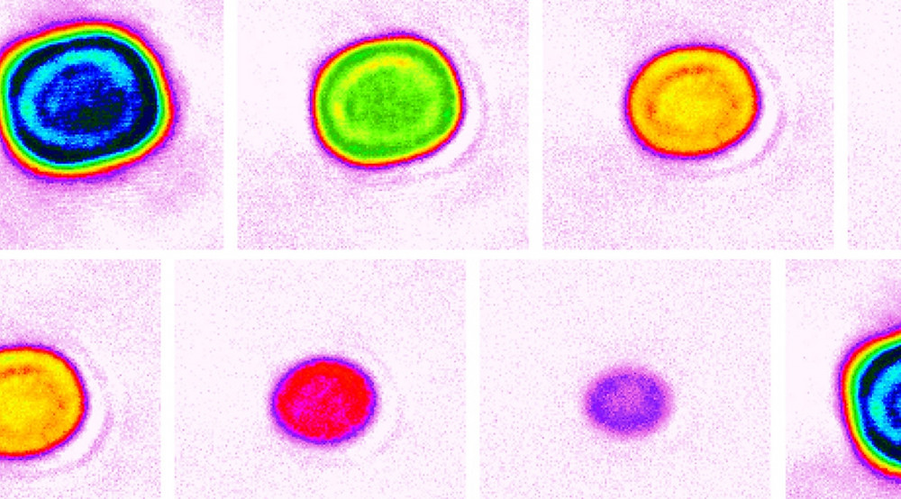 False-color images showing variations in atom numbers (1 to 5 atoms, left to right) and density in different lattice cells of JILA's strontium lattice atomic clock. JILA  researchers observed shifts in the clock's frequency that arise from the emergence of multi-particle interactions when three or more atoms occupy a single cell.  @ Aki Goban, Ye group/JILA