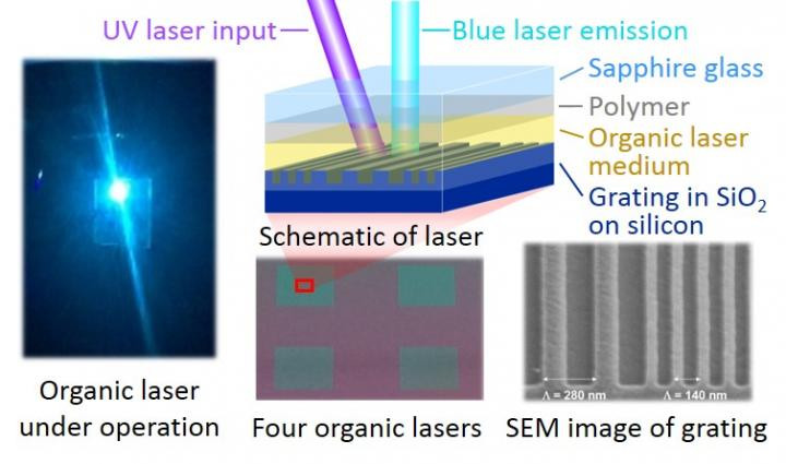 Photograph of a blue organic thin-film laser under operation along with microscope images and a schematic of the lasers. By optimizing the device structure and using appropriate materials, the duration of lasing was extended up to 30 ms, which is more than 100 times longer than previously possible. The schematic is a generalized representation of the structure and is not to scale. CREDIT Atula S. D. Sandanayaka and Willam J. Potscavage, Jr.