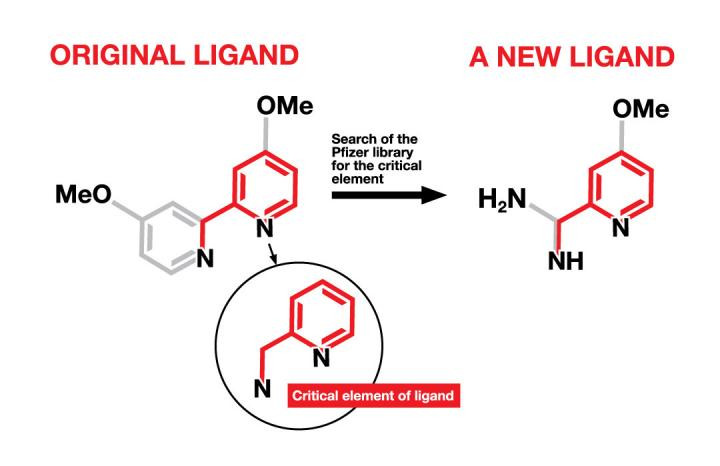 A critical element, found in an original ligand, was the basis for identifying new ligands from among a library of compounds at Pfizer originally developed for drug discovery. The new ligands will be used in the synthesis of new pharmaceutical drug candidates. (Me=methyl; O=oxygen; H=hydrogen; N=nitrogen) @ Graphic by Julia Joshpe/University of Rochester