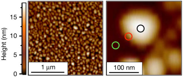 """From a collection of nanoscale platinum particles, left, researchers homed in on the chemistry occurring in different surface areas of individual nanoscale platinum particles like the one at right, which measures about 100 billionths of an inch across. Researchers found that chemical reactivity is concentrated at the edges of the particles (red circle at right), with lesser activity in the central area (black circle). This image was produced by an atomic force microscope. (Credit: """"High-spatial-resolution mapping of catalytic reactions on single particles,"""" Nature, Jan. 11, 2017)"""