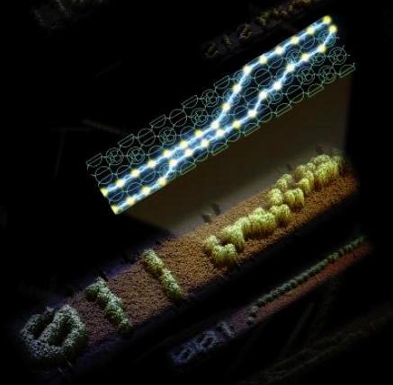 Artist's representation of a DNA computing system.  @ Caltech