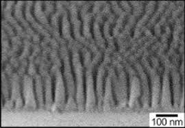 This cross-sectional image from a scanning electron microscope shows a glass surface textured with 170-nanometer-tall cones. The cones are packed very close to each other, only 52 nanometers apart. A two-inch piece of glass has 900 billion cones on its surface. @ Brookhaven National Laboratory