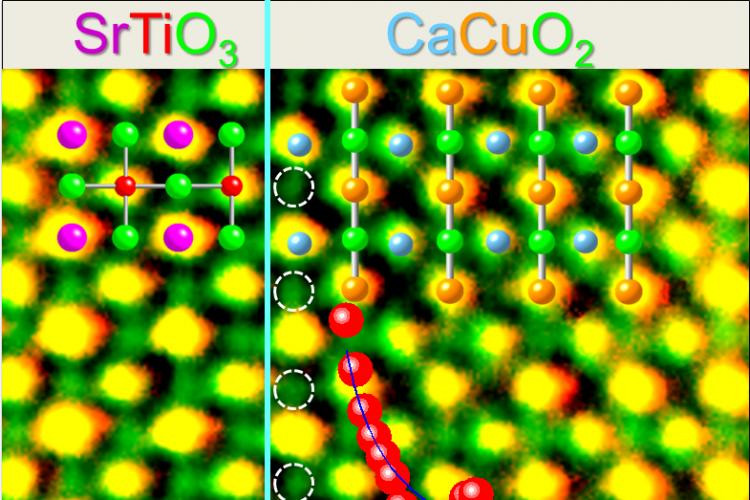 An ORNL-University of Rome study has delivered direct evidence of high-temperature superconductivity at the interface of two insulating oxide materials. Electron microscopy at ORNL showed that superconductivity arises from oxygen ions (circled in white) that are incorporated into the interface calcium layer.