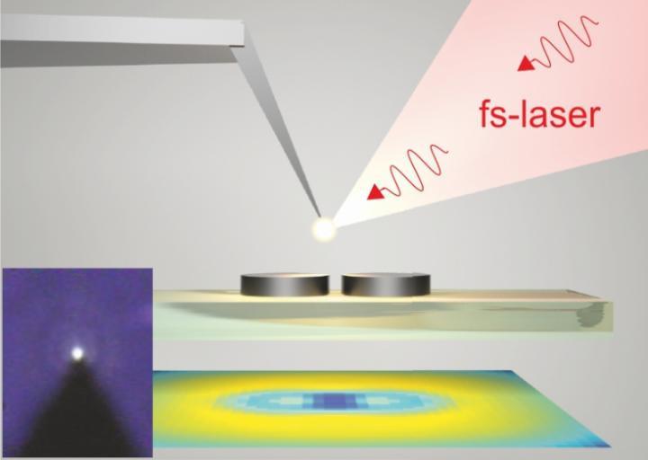 Nanoparticle size amounts to 150 nanometers.  @ Makarov, Sinev et al.