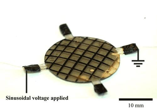 An initially flat thin circular sheet of elastomer morphs into a dome shape based on which sets of electrodes are turned on or off  @ Image courtesy of the Clarke Lab/Harvard SEAS