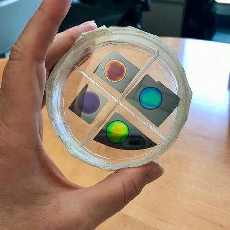 iPhone plus nanoscale porous silicon equals cheap, simple home diagnostics