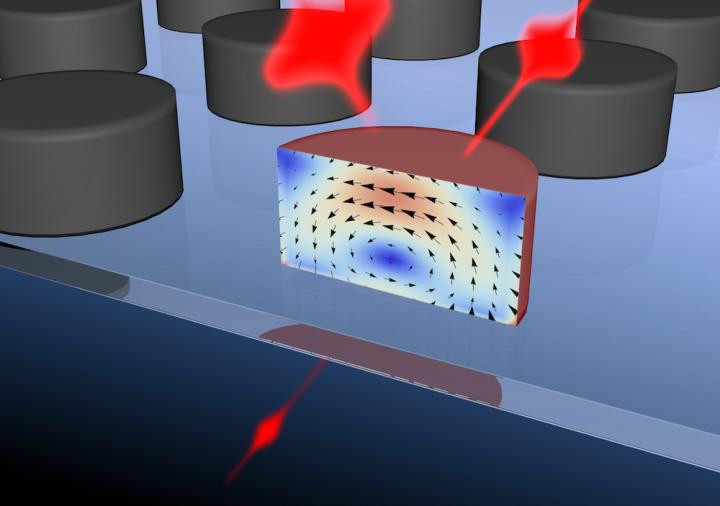 """""""Device"""" is a disc 250 nm in diameter that is capable of switching optical pulses at femtosecond rates (Maxim Scherbakov et al)"""