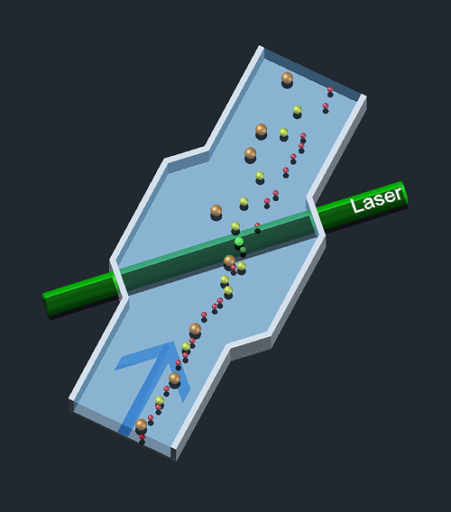 A schematic diagram of how the sorting system works. Particles of many different sizes pass through an optical standing wave in a laser cavity at the same oblique angle. But they exit the cavity by different pathways according to their size. Image: J. Curry/PML