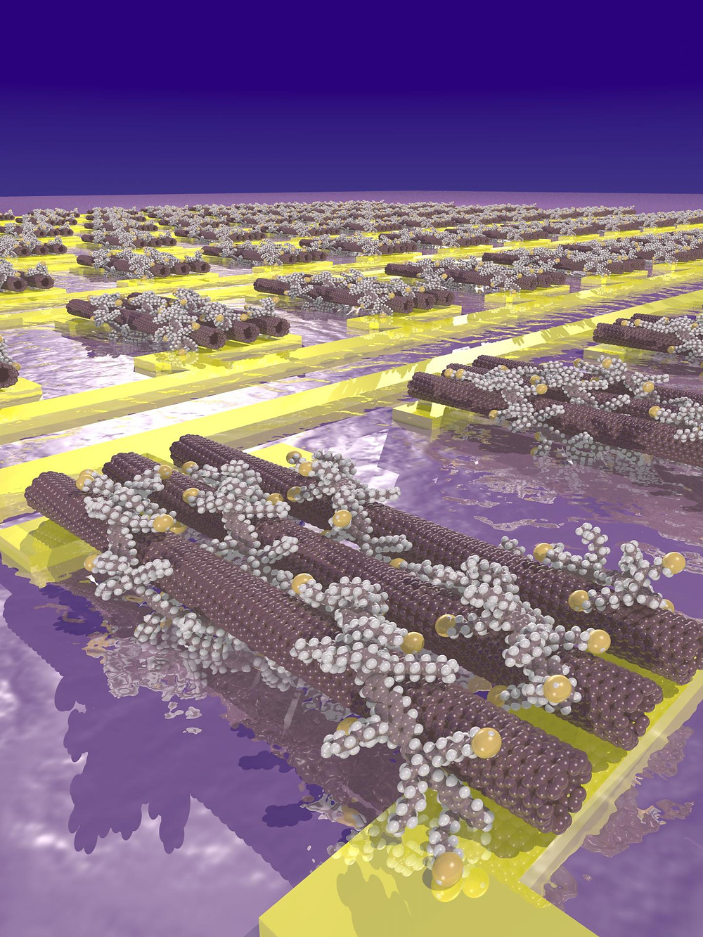 This is an artist's impression of carbon nanotubes wrapped in polymers with thiol side chains (yellow spheres) and assembled on gold electrodes. @ Arjen Kamp