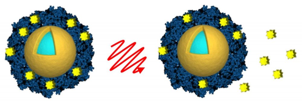Researchers from Rice University and Northwestern University loaded light-activated nanoshells (gold and light blue) with the anticancer drug lapatinib (yellow) by encasing the drug in an envelope of albumin (blue). Light from a near-infrared laser (center) was used to remotely trigger the release of the drug (right) after the nanoshells were taken up by cancer cells. @ A. Goodman/Rice University