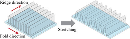 The dimensions of each ridge directly affect the transparent conductor's stretchability. Image: Abhijeet Bagal.