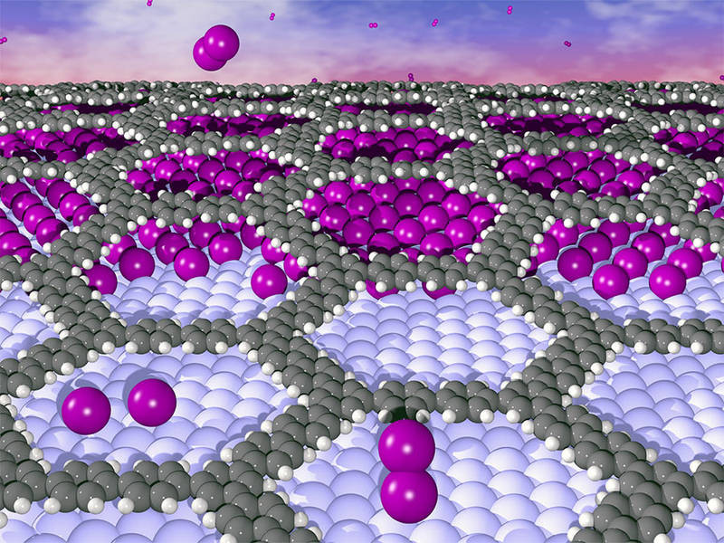The illustration shows how iodine (purple) is embedded between the organic layer and the metal, thus reducing adhesion. @ IFM, University of Linköping