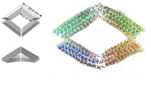 A schematic of a Bennett linkage and a model simulation showing the Bennett linkage made out of DNA.  @ Lawrence Berkeley National Laboratory